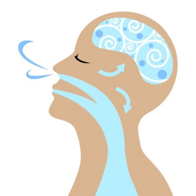 Breathing-Indoor-Air-Quality-Allergy-Standards-Indoor-Air