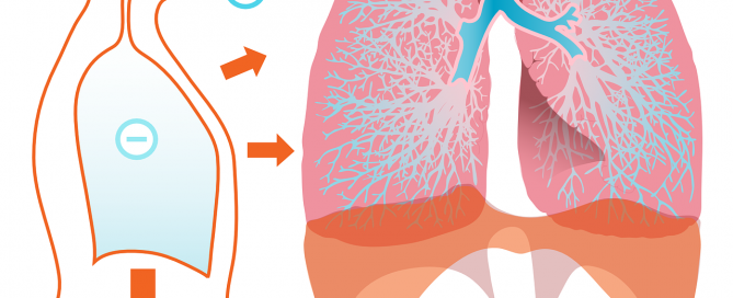 VOCs effect on respiratory system
